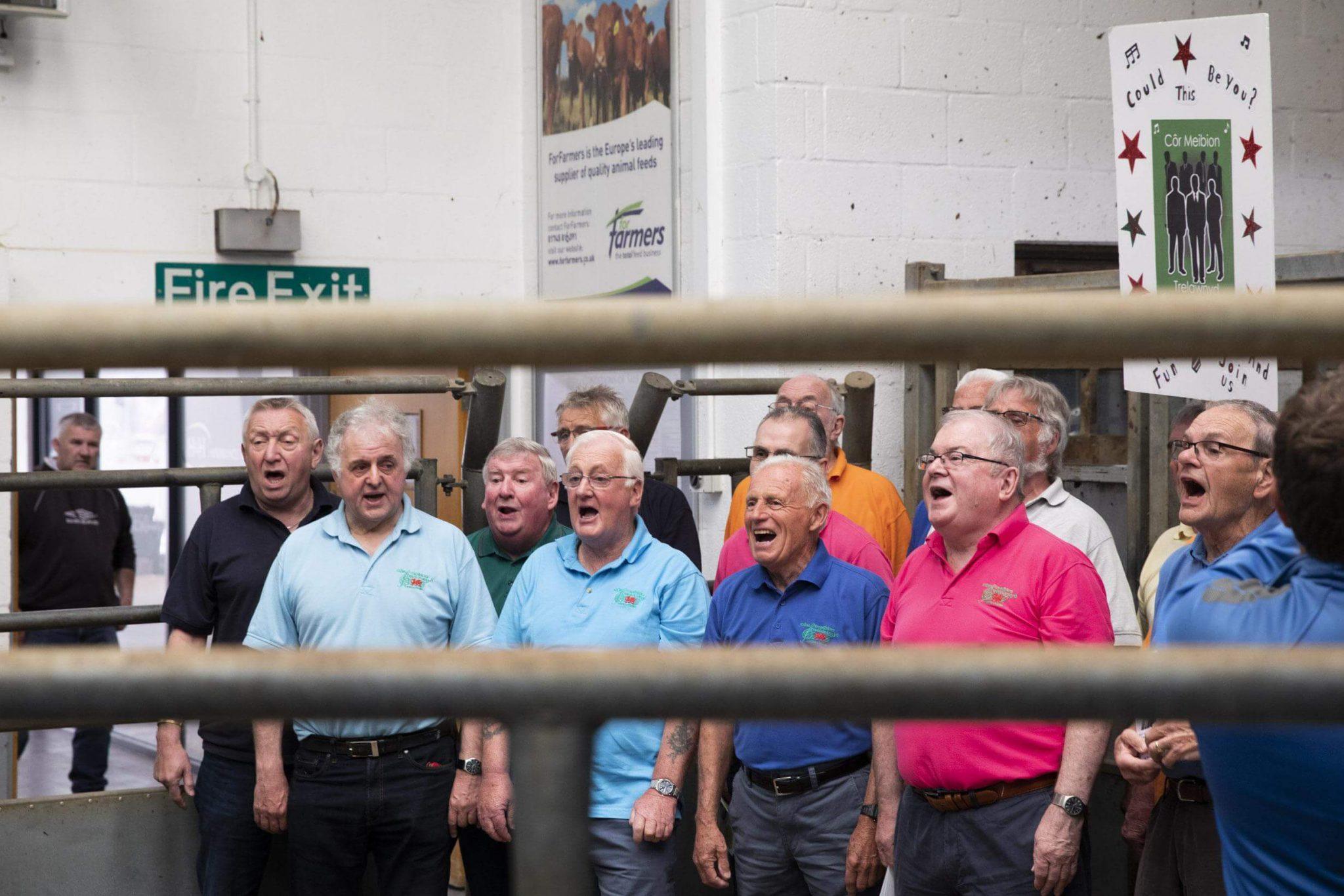 Dainuojantys vyrai. Filmas